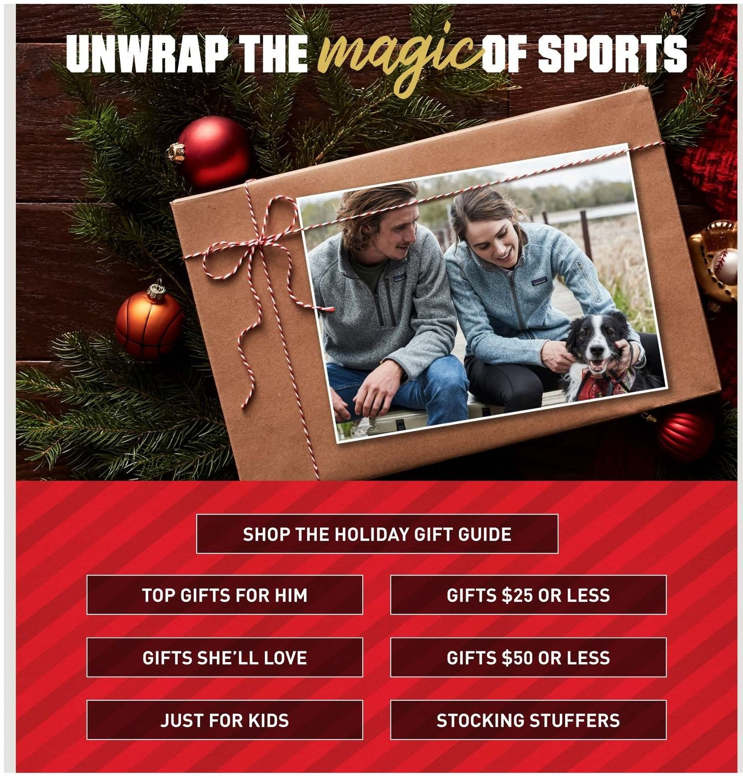 Dick's Sporting Goods Cyber Monday 2019 Page 15
