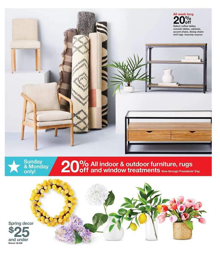 Target Weekly February 16 - 22, 2020 Page 13