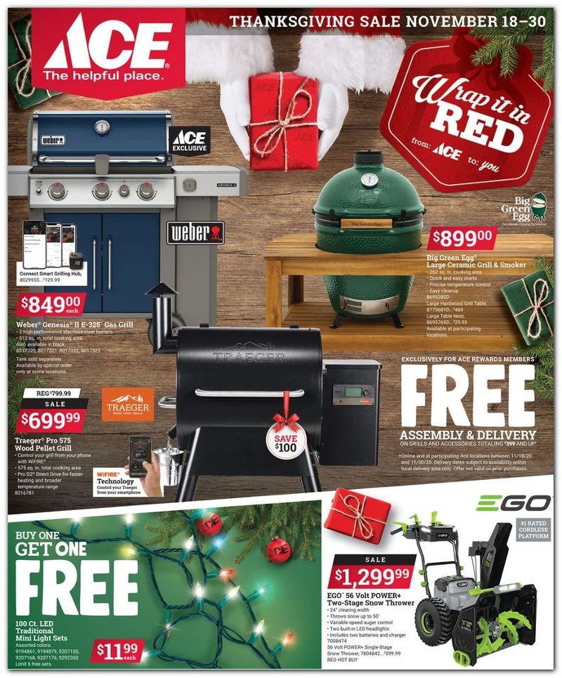 Ace Hardware Black Friday 2020 Page 1