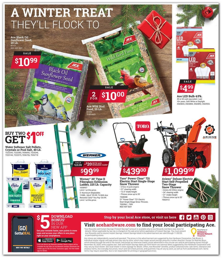 Ace Hardware Black Friday 2020 Page 12