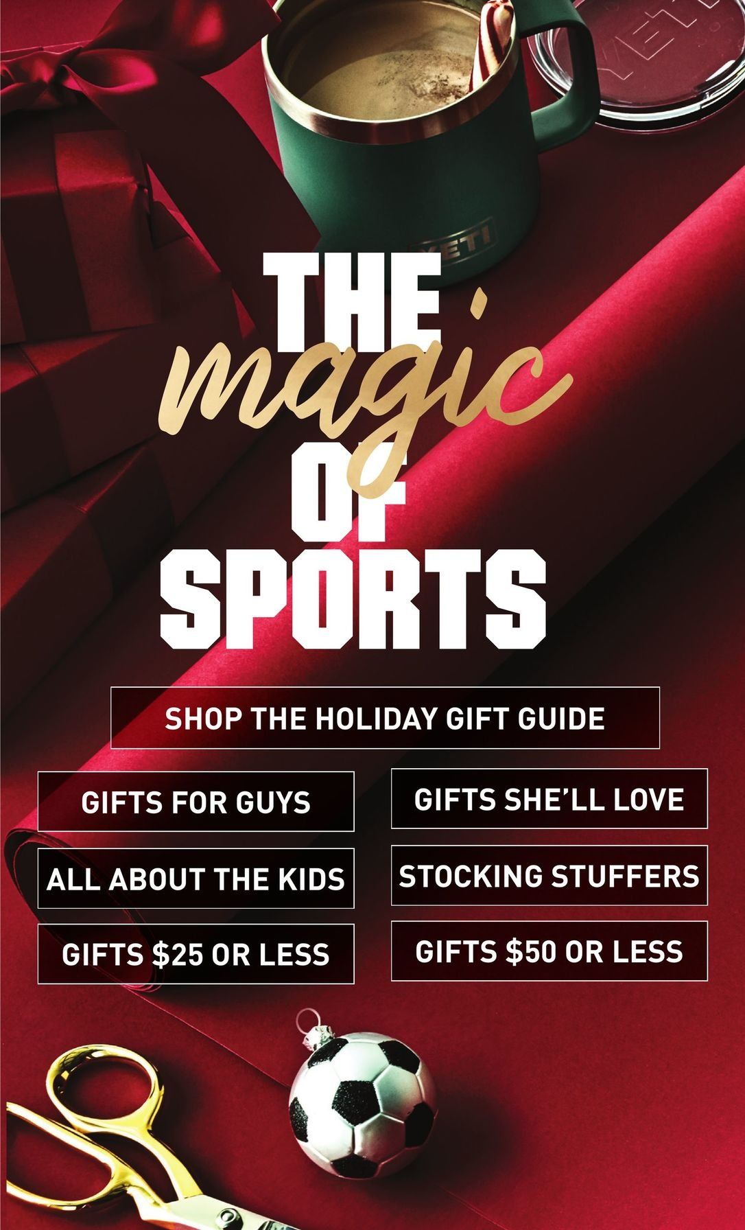 Dick's Sporting Goods Black Friday 2020 Page 11