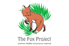 The Fox Project